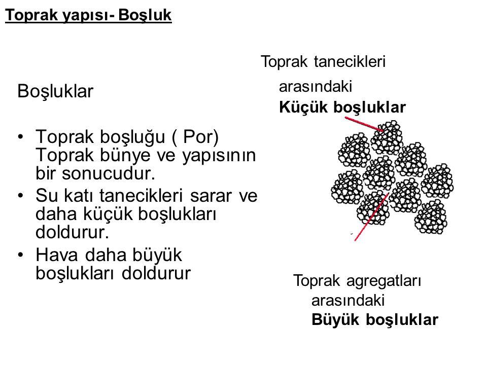 Toprak boşluğu ( Por) Toprak bünye ve yapısının bir sonucudur.