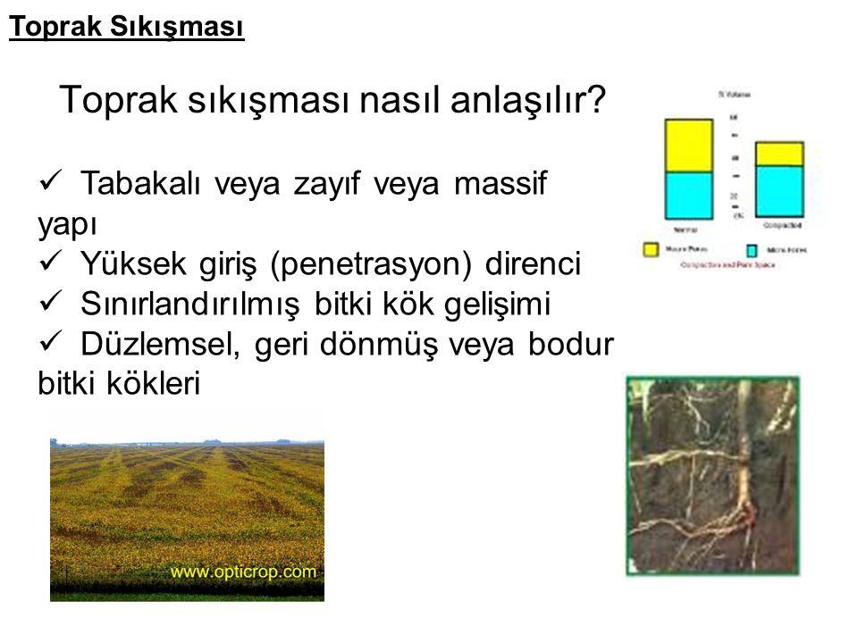 Toprak sıkışması nasıl anlaşılır