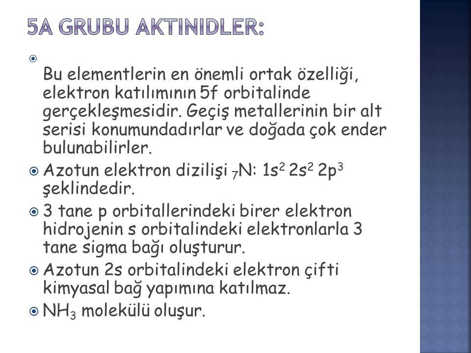5A GRUBU Aktinidler: