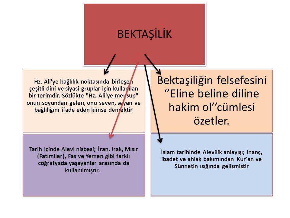 Hz. Ali ye bağlılık noktasında birleşen çeşitli dini ve siyasi gruplar için kullanılan bir terimdir. Sözlükte Hz. Ali ye mensup onun soyundan gelen, onu seven, sayan ve bağlılığını ifade eden kimse demektir