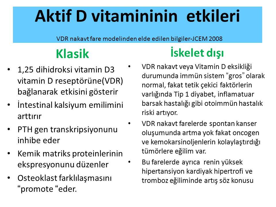 Aktif D vitamininin etkileri VDR nakavt fare modelinden elde edilen bilgiler-JCEM 2008