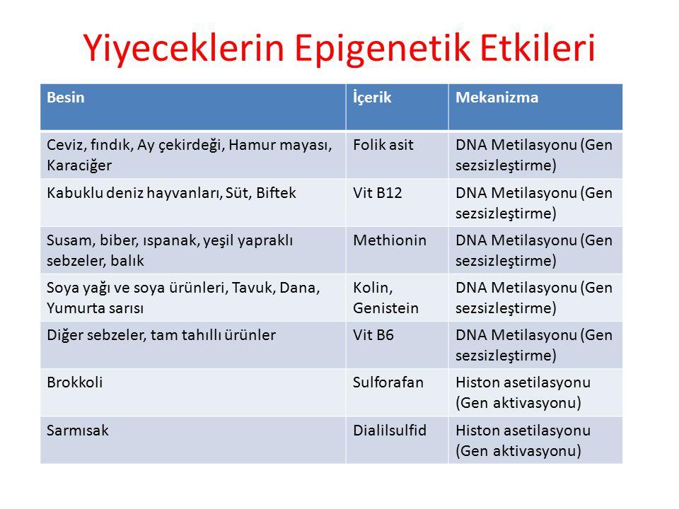 Yiyeceklerin Epigenetik Etkileri