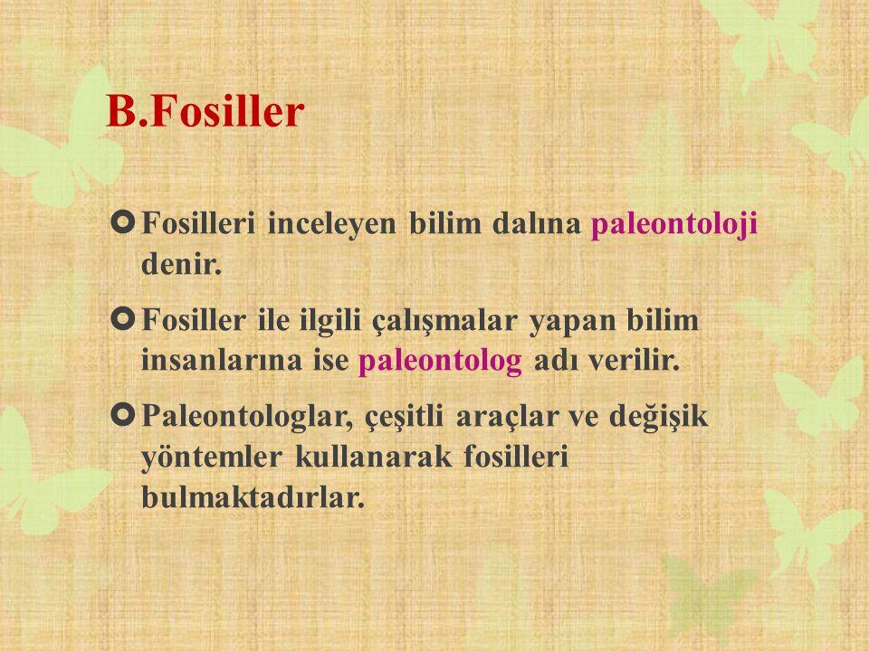 B.Fosiller Fosilleri inceleyen bilim dalına paleontoloji denir.