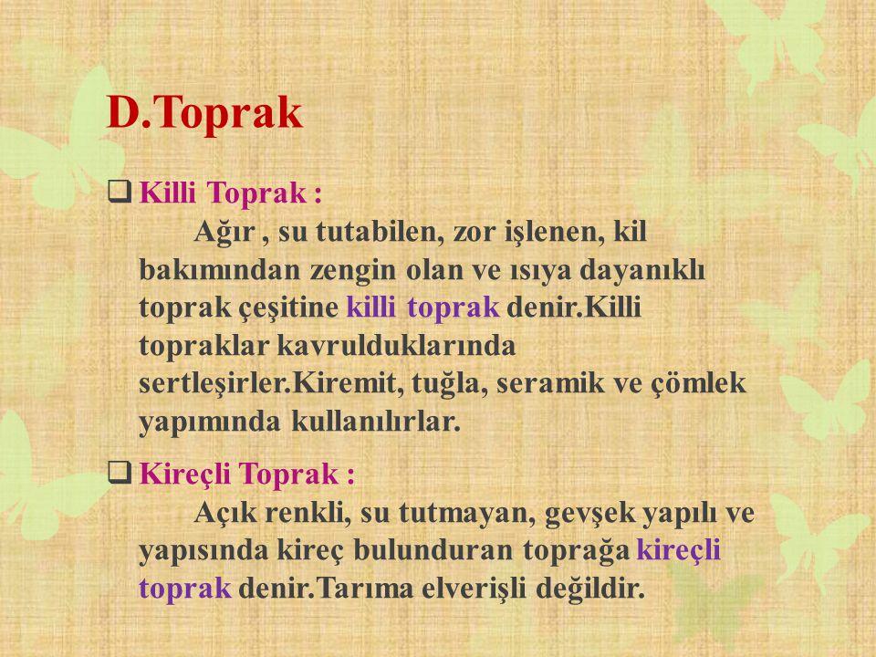 D.Toprak