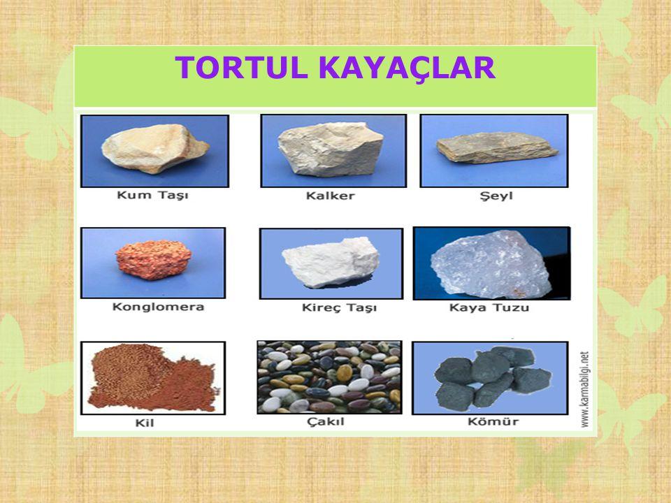 TORTUL KAYAÇLAR