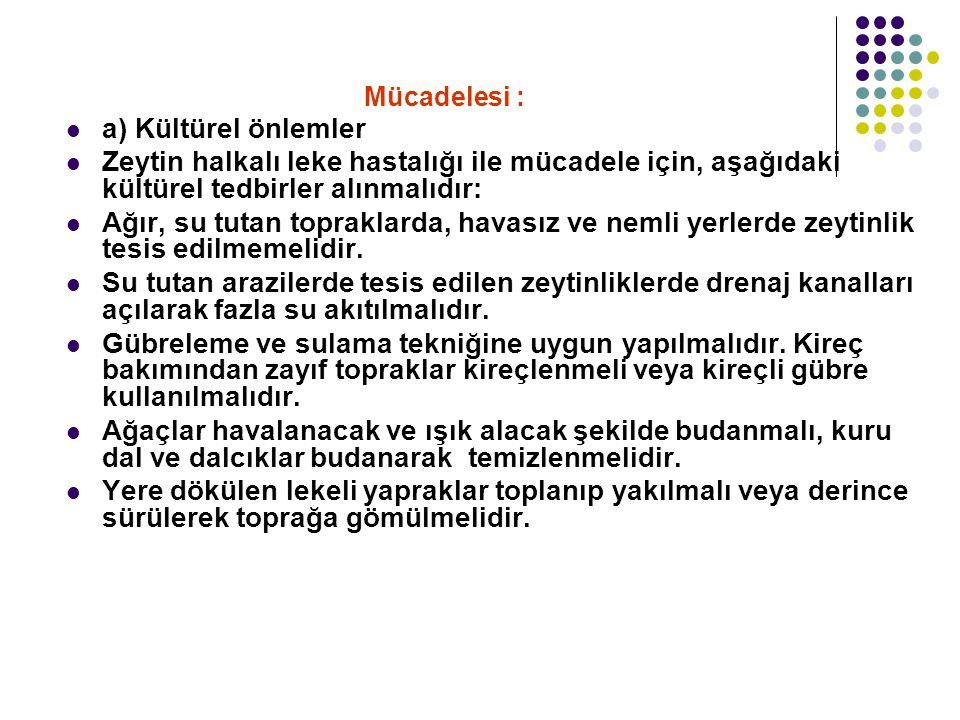 Mücadelesi : a) Kültürel önlemler. Zeytin halkalı leke hastalığı ile mücadele için, aşağıdaki kültürel tedbirler alınmalıdır: