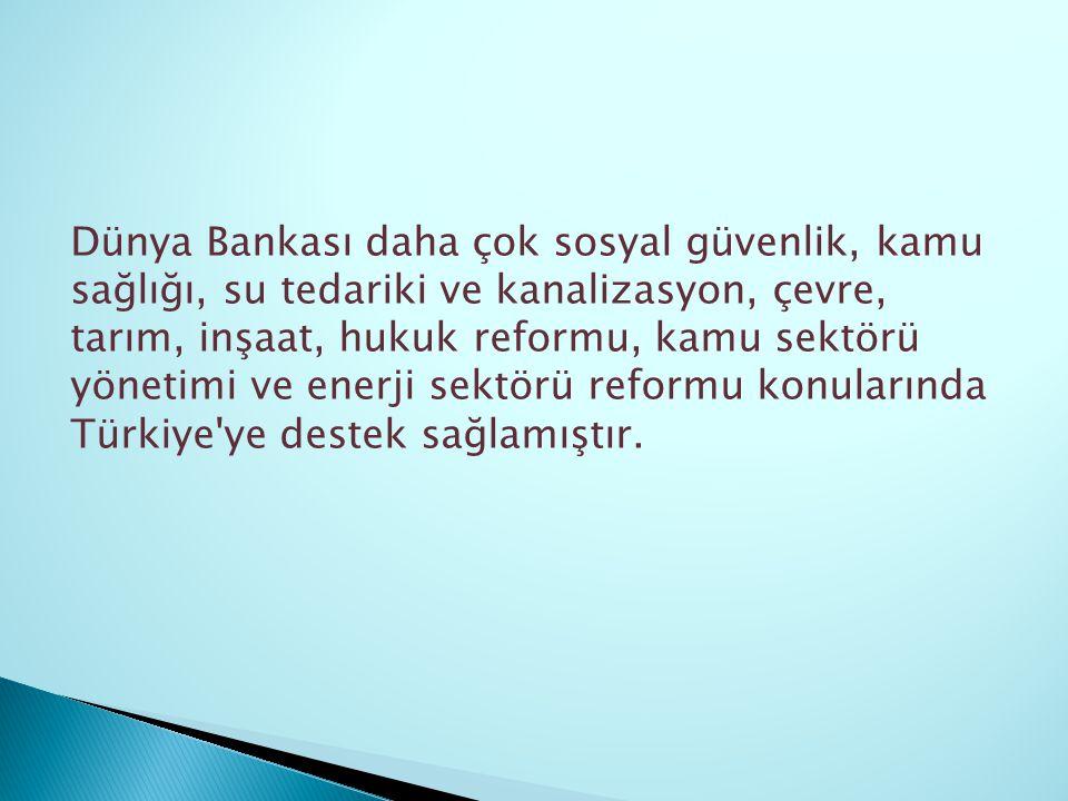 Dünya Bankası daha çok sosyal güvenlik, kamu sağlığı, su tedariki ve kanalizasyon, çevre, tarım, inşaat, hukuk reformu, kamu sektörü yönetimi ve enerji sektörü reformu konularında Türkiye ye destek sağlamıştır.