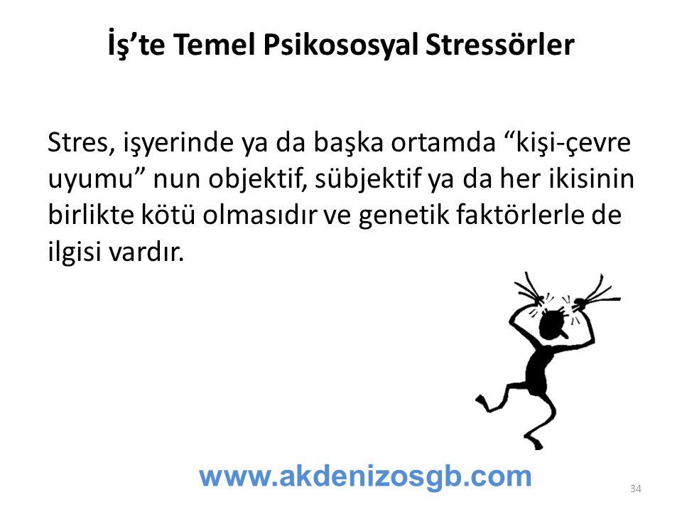 İş'te Temel Psikososyal Stressörler