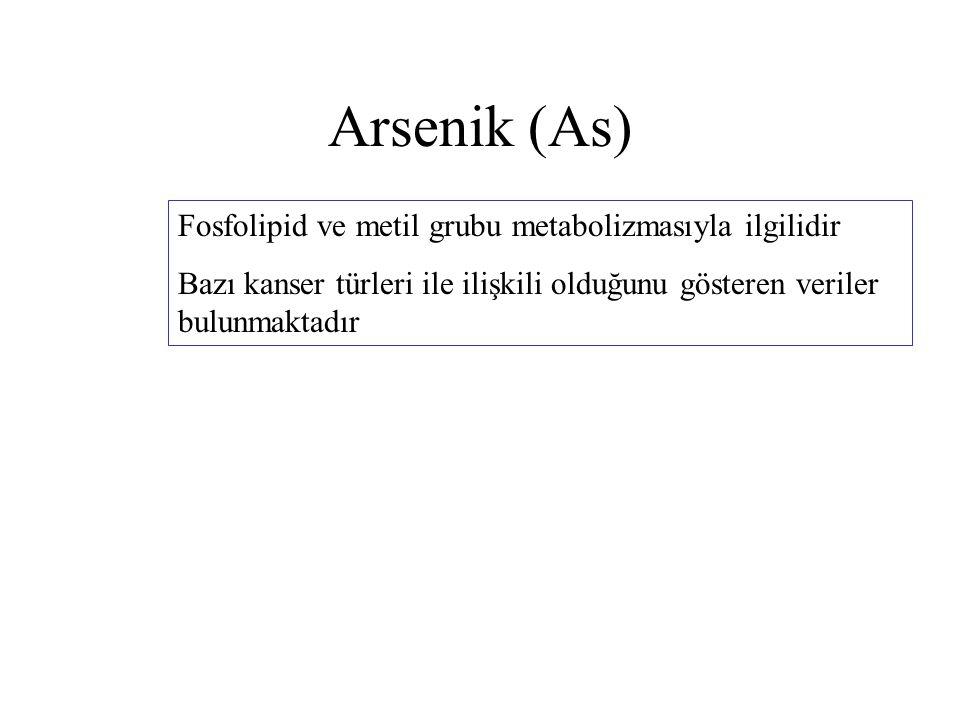 Arsenik (As) Fosfolipid ve metil grubu metabolizmasıyla ilgilidir