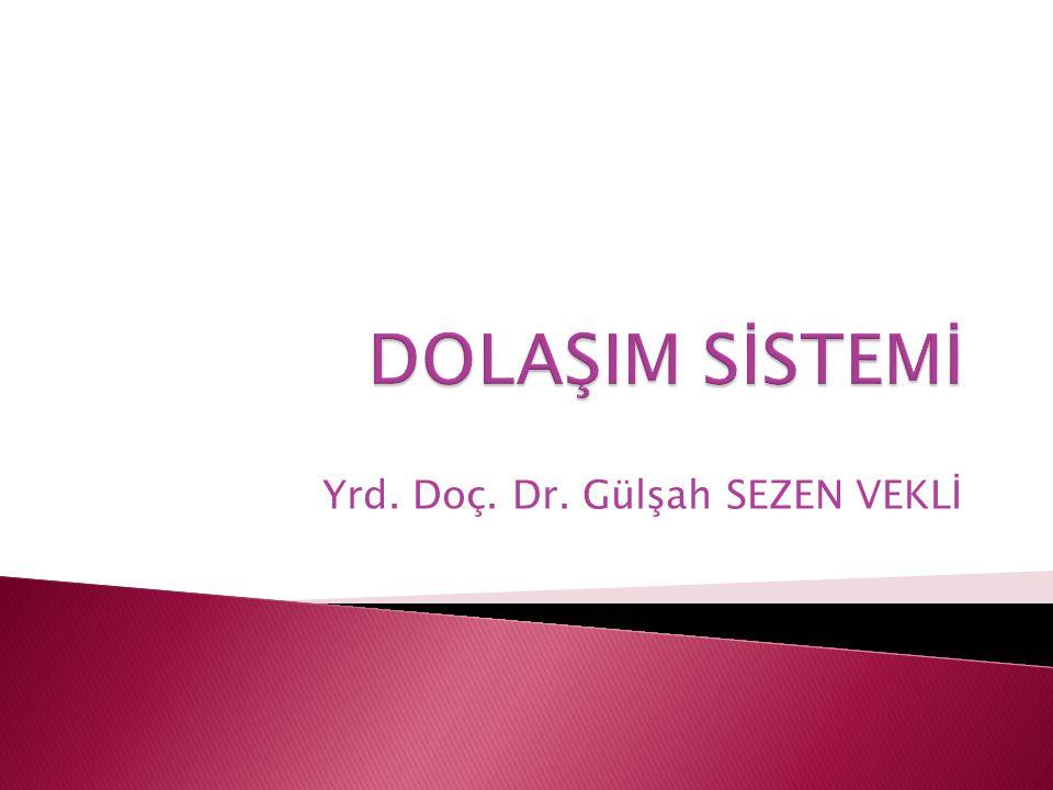 Yrd. Doç. Dr. Gülşah SEZEN VEKLİ