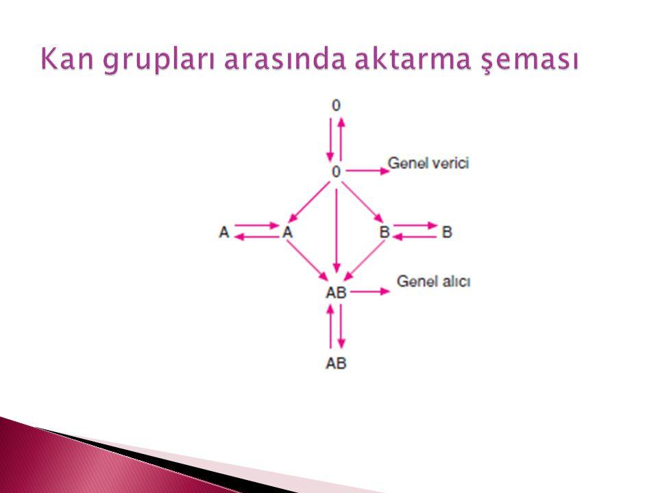 Kan grupları arasında aktarma şeması