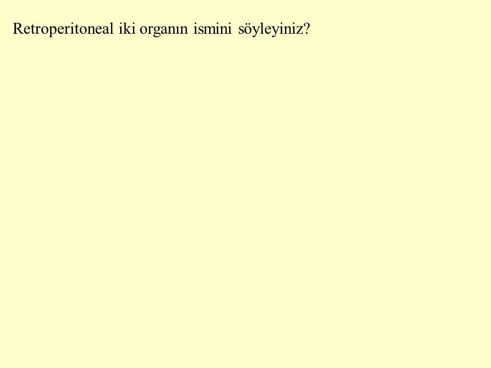 Retroperitoneal iki organın ismini söyleyiniz