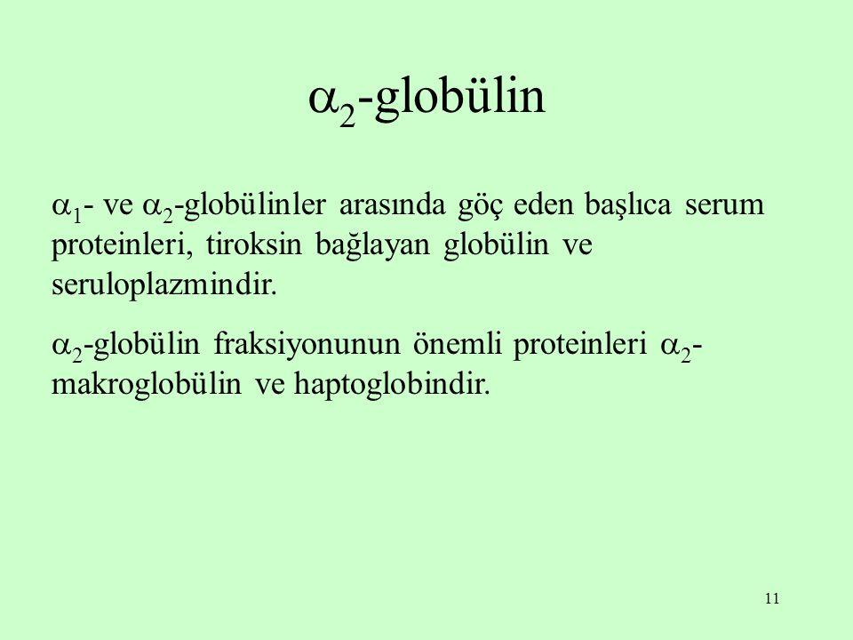 2-globülin 1- ve 2-globülinler arasında göç eden başlıca serum proteinleri, tiroksin bağlayan globülin ve seruloplazmindir.
