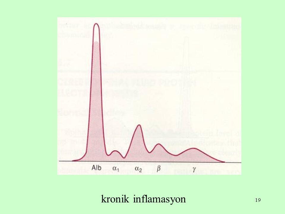 kronik inflamasyon