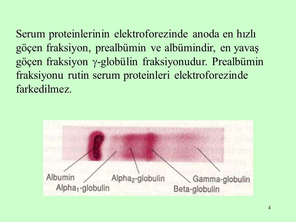 Serum proteinlerinin elektroforezinde anoda en hızlı göçen fraksiyon, prealbümin ve albümindir, en yavaş göçen fraksiyon -globülin fraksiyonudur.