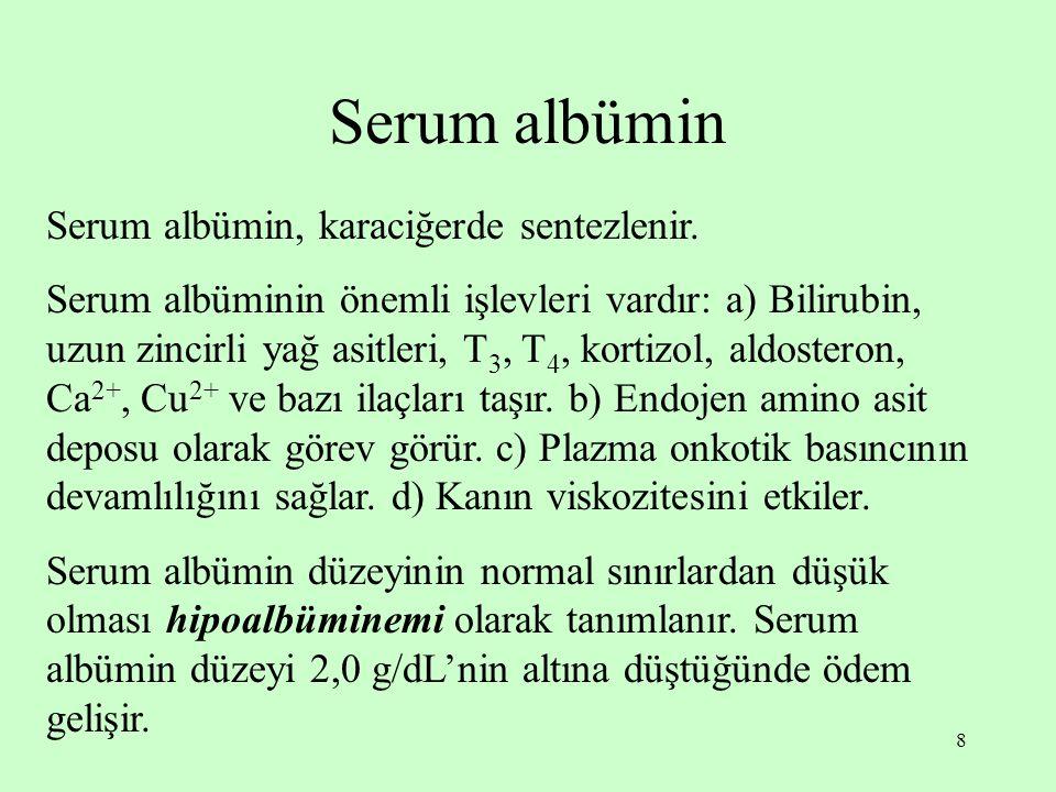 Serum albümin Serum albümin, karaciğerde sentezlenir.