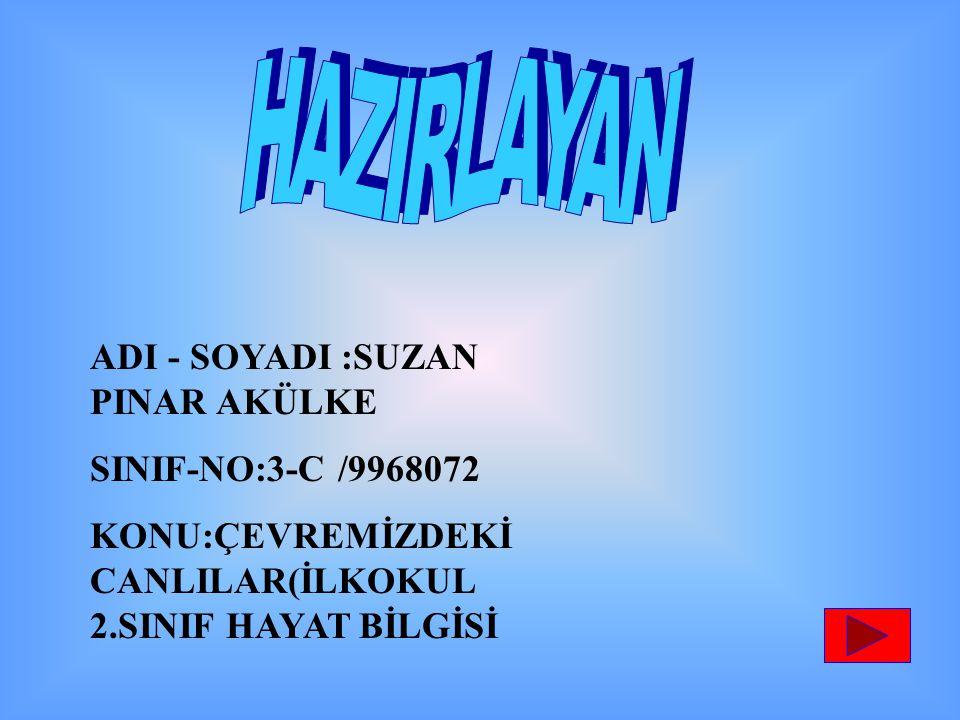 HAZIRLAYAN ADI - SOYADI :SUZAN PINAR AKÜLKE SINIF-NO:3-C /9968072