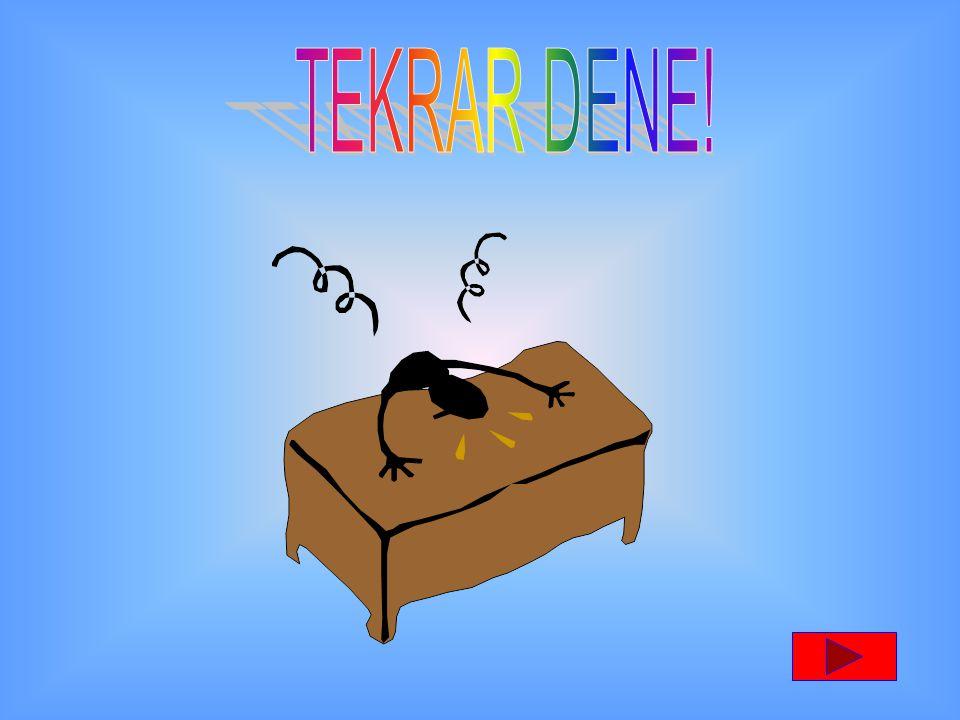 TEKRAR DENE!