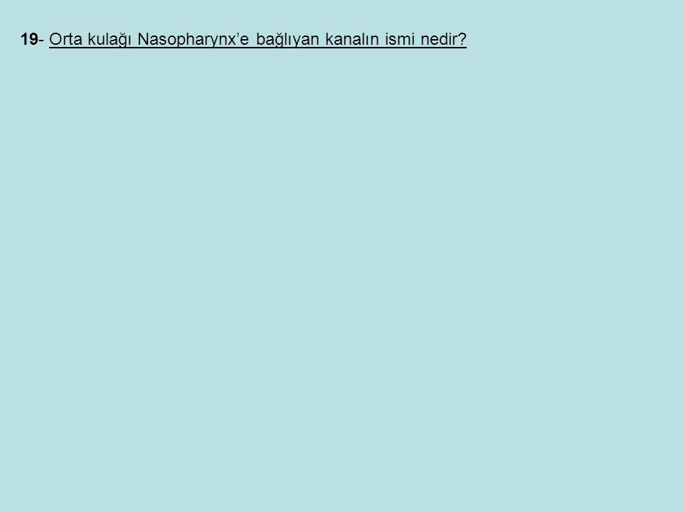 19- Orta kulağı Nasopharynx'e bağlıyan kanalın ismi nedir
