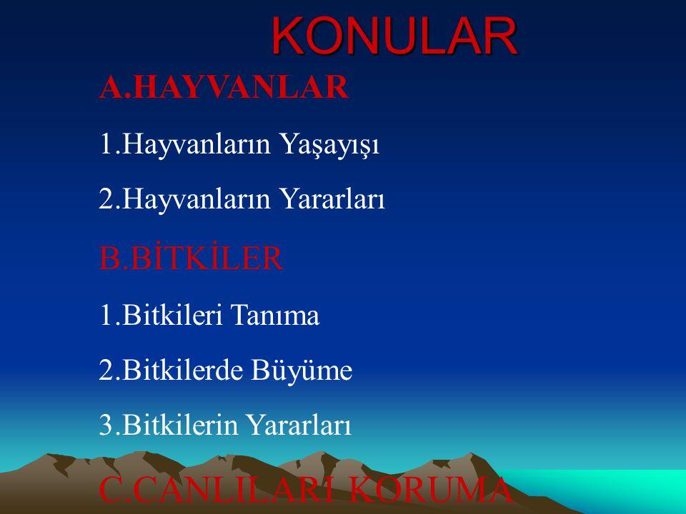 KONULAR C.CANLILARI KORUMA A.HAYVANLAR B.BİTKİLER