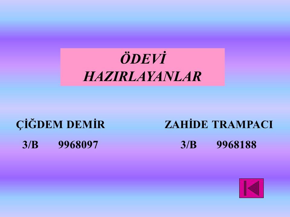 ÖDEVİ HAZIRLAYANLAR ÇİĞDEM DEMİR 3/B 9968097 ZAHİDE TRAMPACI