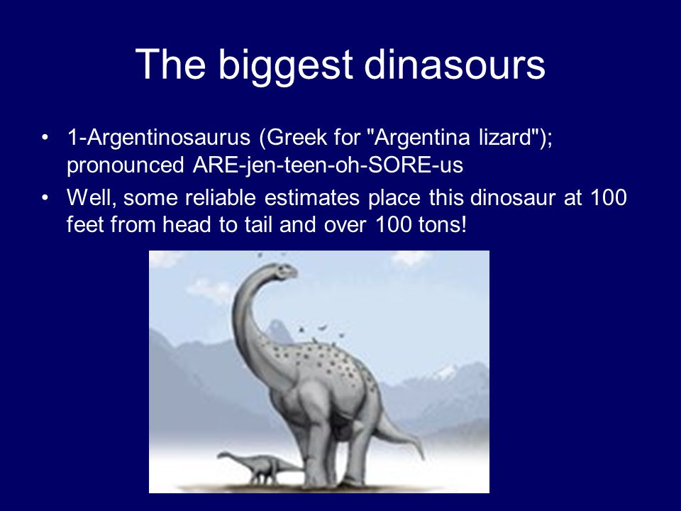The biggest dinasours 1-Argentinosaurus (Greek for Argentina lizard ); pronounced ARE-jen-teen-oh-SORE-us.