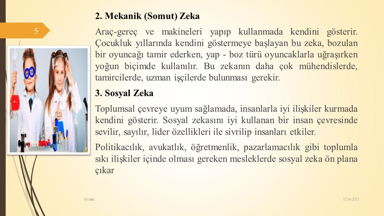 2. Mekanik (Somut) Zeka