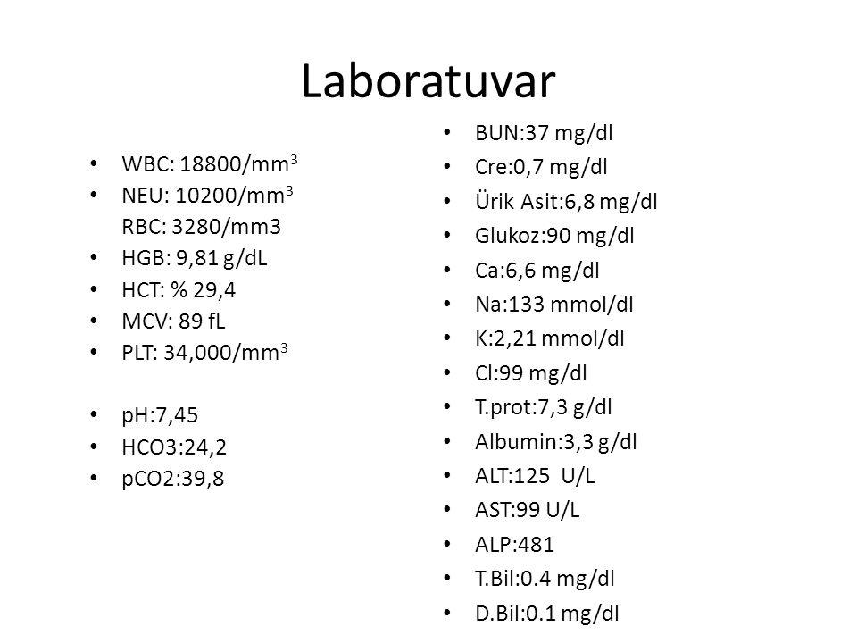 Laboratuvar WBC: 18800/mm3 NEU: 10200/mm3 RBC: 3280/mm3 HGB: 9,81 g/dL