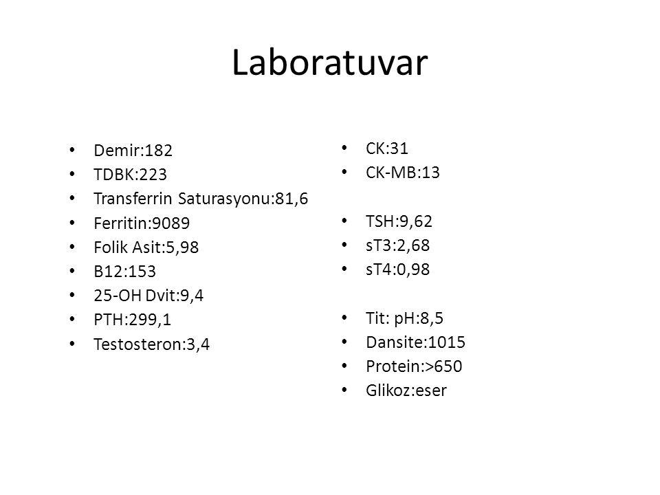 Laboratuvar Demir:182 CK:31 TDBK:223 CK-MB:13