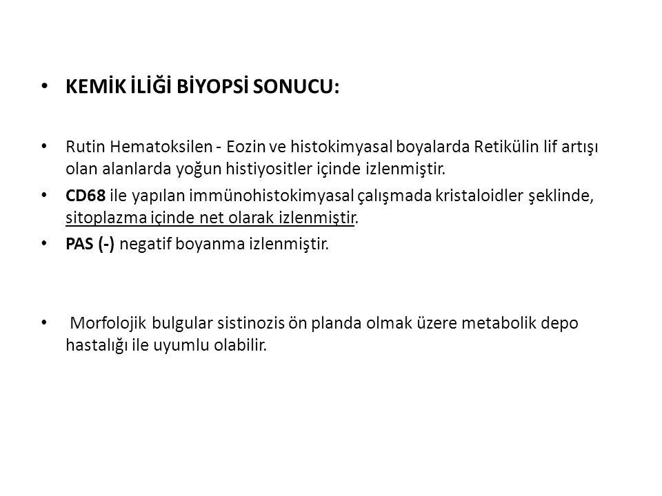 KEMİK İLİĞİ BİYOPSİ SONUCU:
