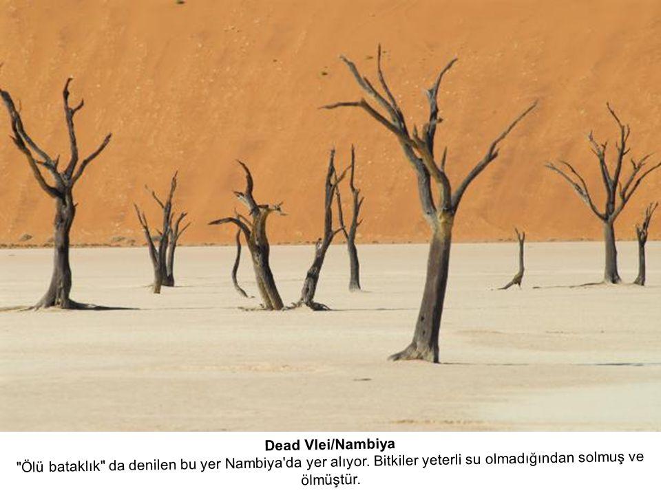 Dead Vlei/Nambiya Ölü bataklık da denilen bu yer Nambiya da yer alıyor.