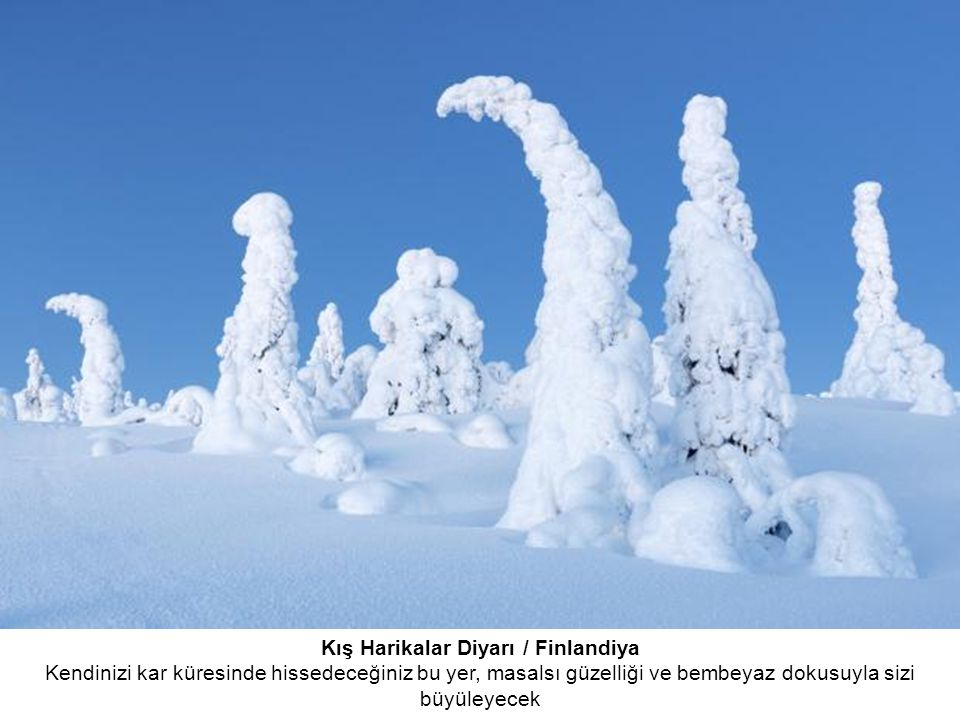 Kış Harikalar Diyarı / Finlandiya