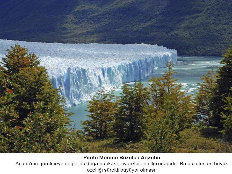 Perito Moreno Buzulu / Arjantin