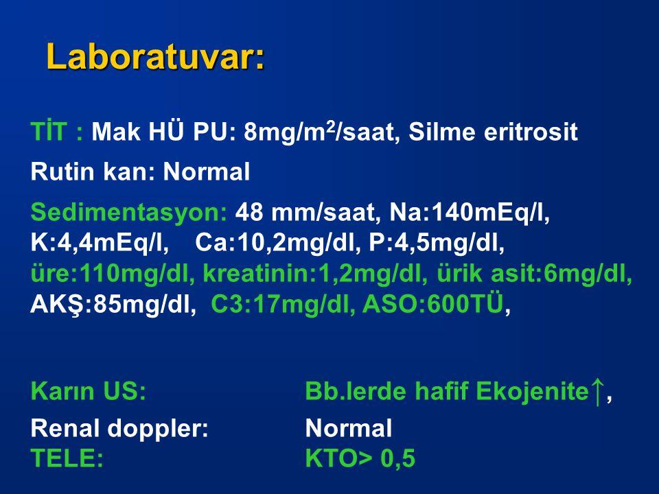 Laboratuvar: TİT : Mak HÜ PU: 8mg/m2/saat, Silme eritrosit