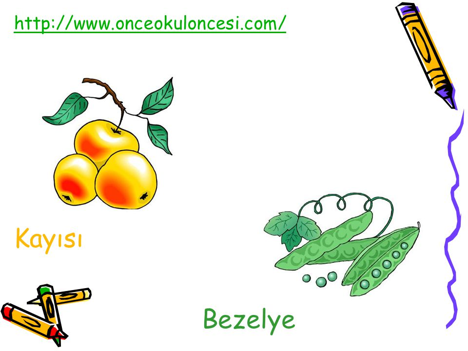http://www.onceokuloncesi.com/ Kayısı Bezelye