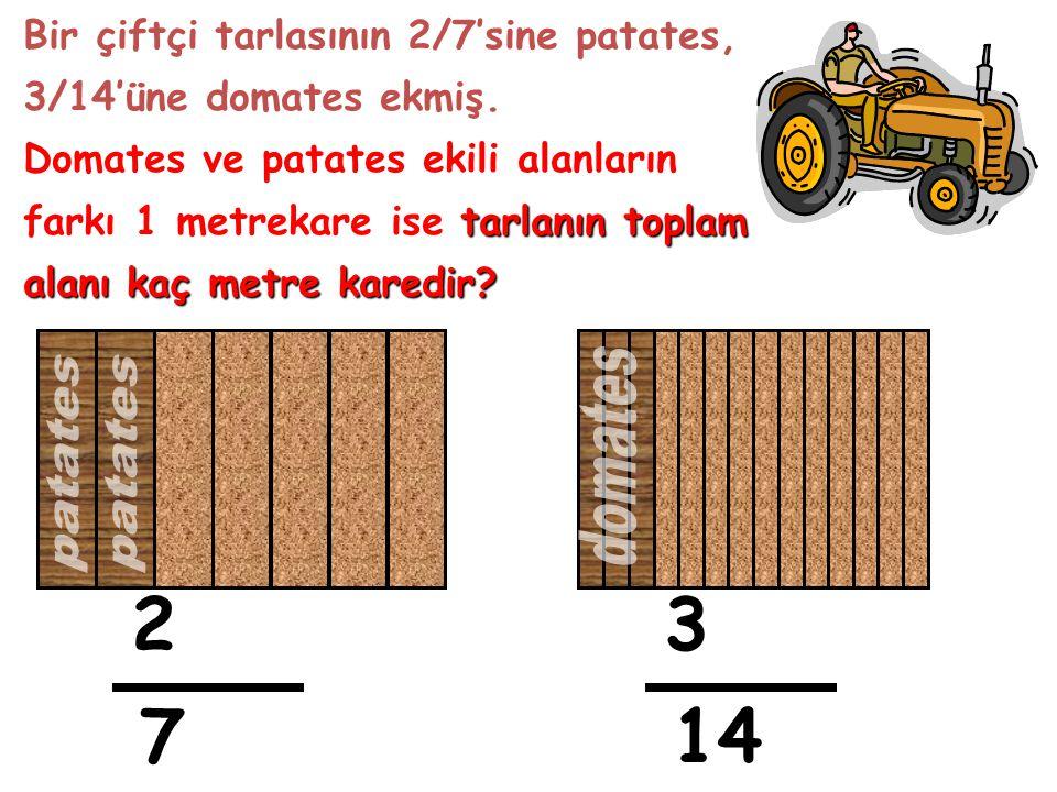 2 3 7 14 domates patates Bir çiftçi tarlasının 2/7'sine patates,