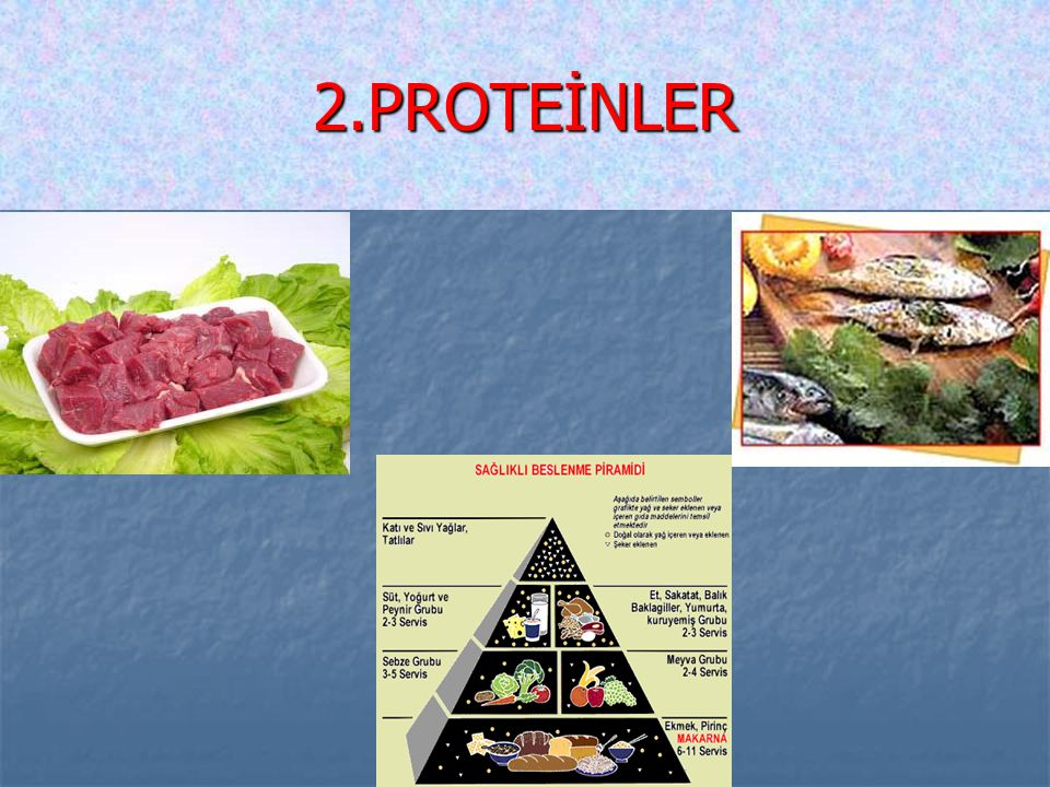 2.PROTEİNLER