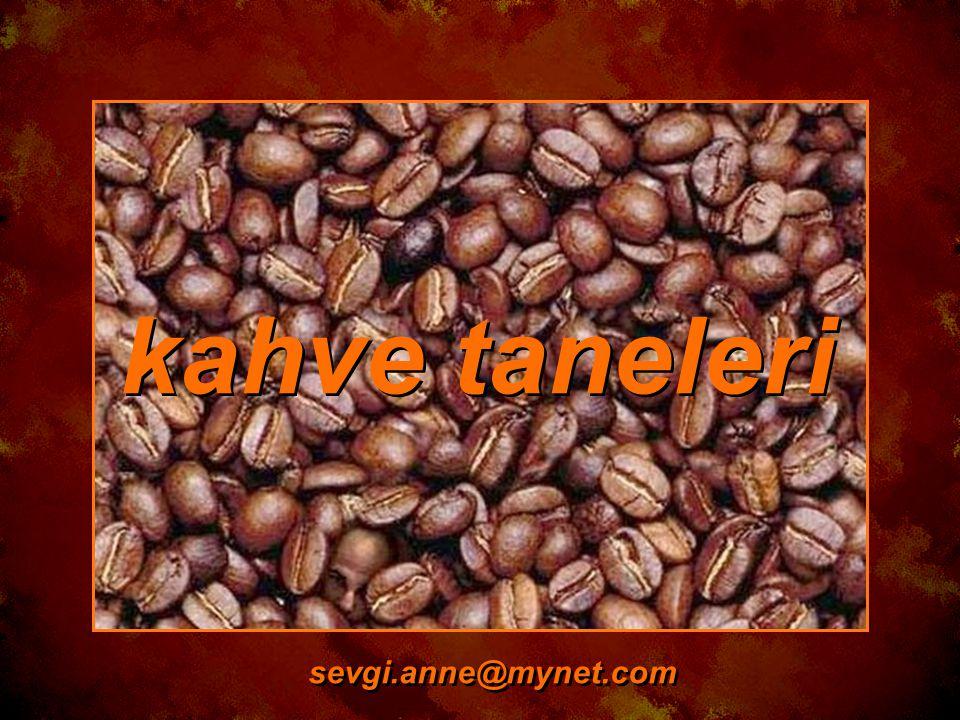 kahve taneleri sevgi.anne@mynet.com