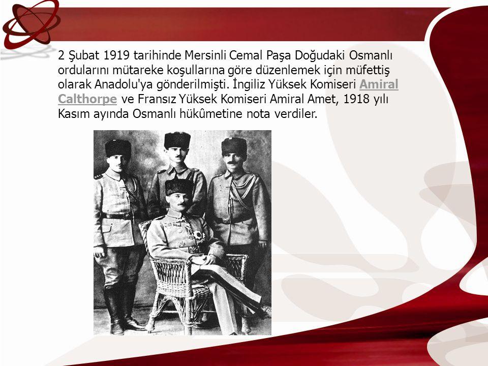 2 Şubat 1919 tarihinde Mersinli Cemal Paşa Doğudaki Osmanlı ordularını mütareke koşullarına göre düzenlemek için müfettiş olarak Anadolu ya gönderilmişti.