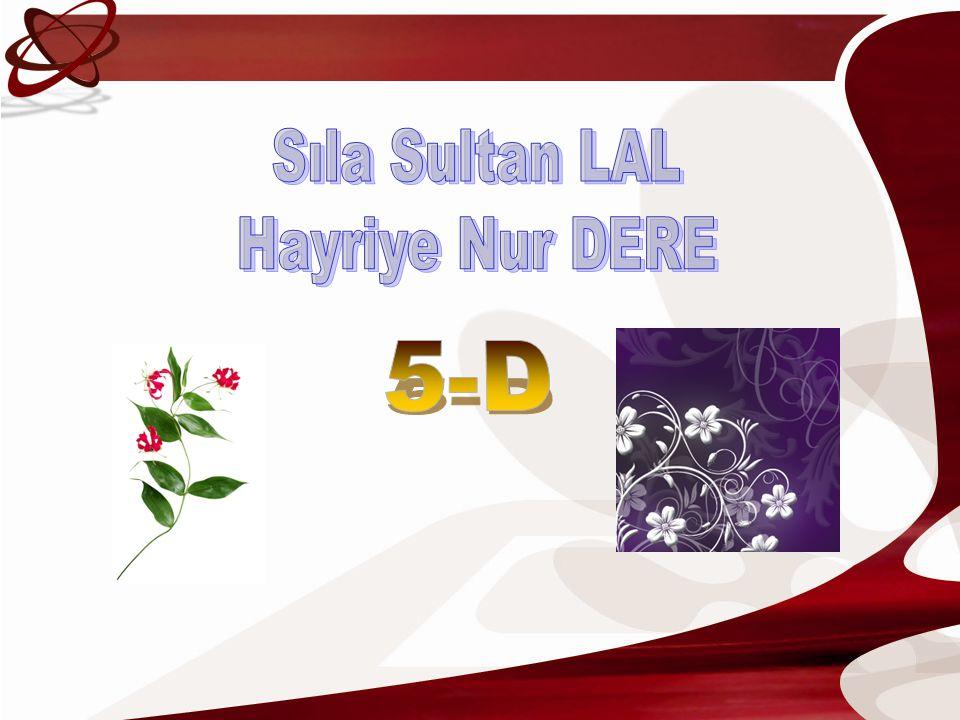 Sıla Sultan LAL Hayriye Nur DERE 5-D