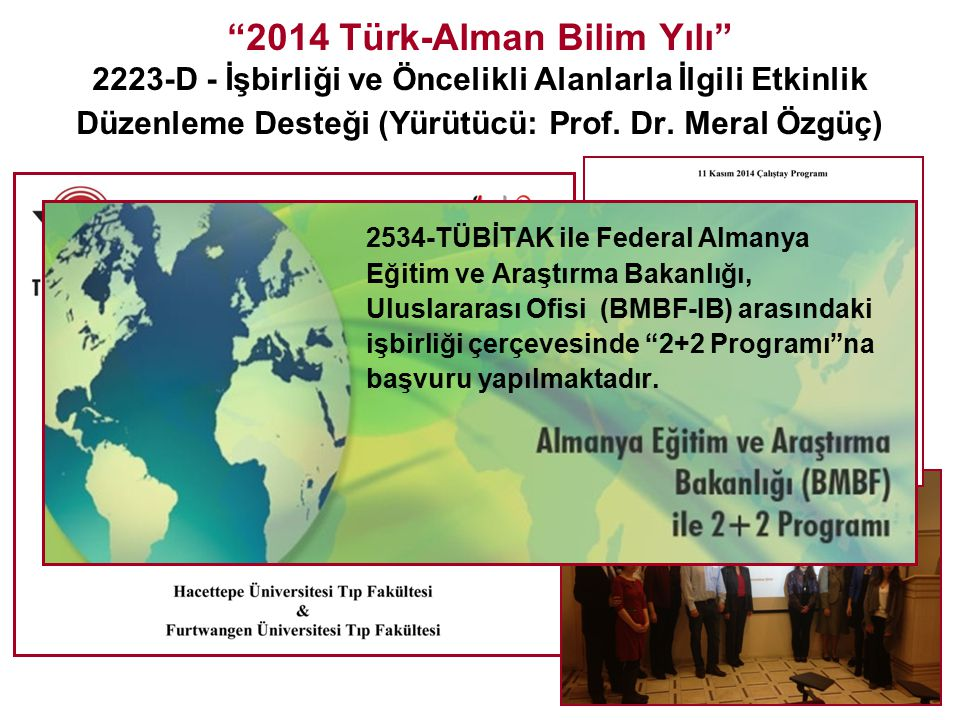 2014 Türk-Alman Bilim Yılı 2223-D - İşbirliği ve Öncelikli Alanlarla İlgili Etkinlik Düzenleme Desteği (Yürütücü: Prof. Dr. Meral Özgüç)