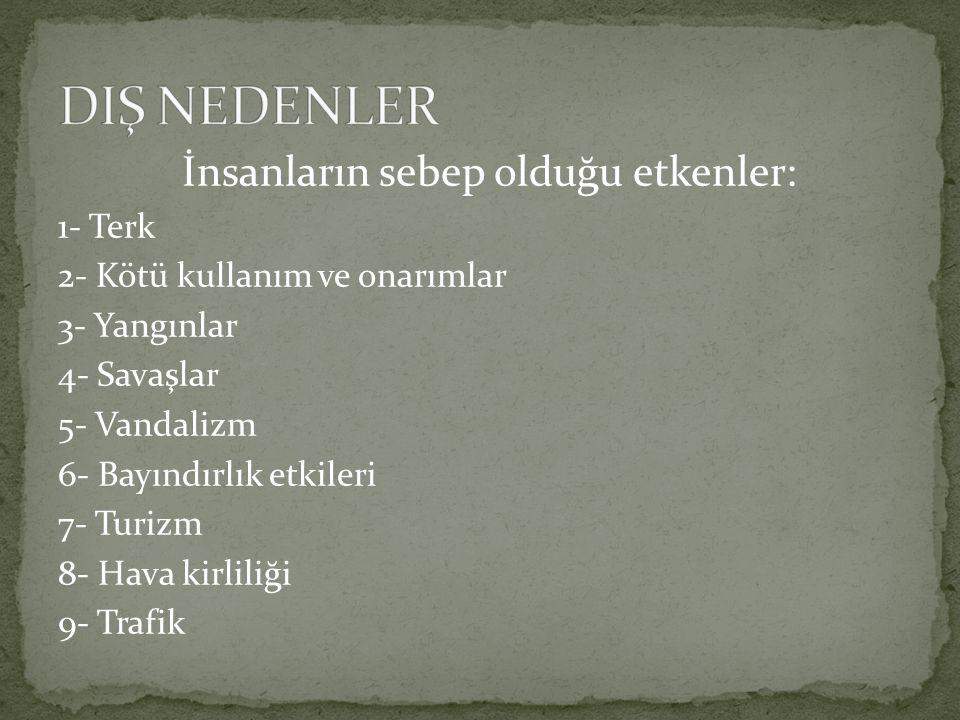 DIŞ NEDENLER