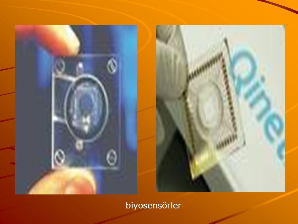 biyosensörler