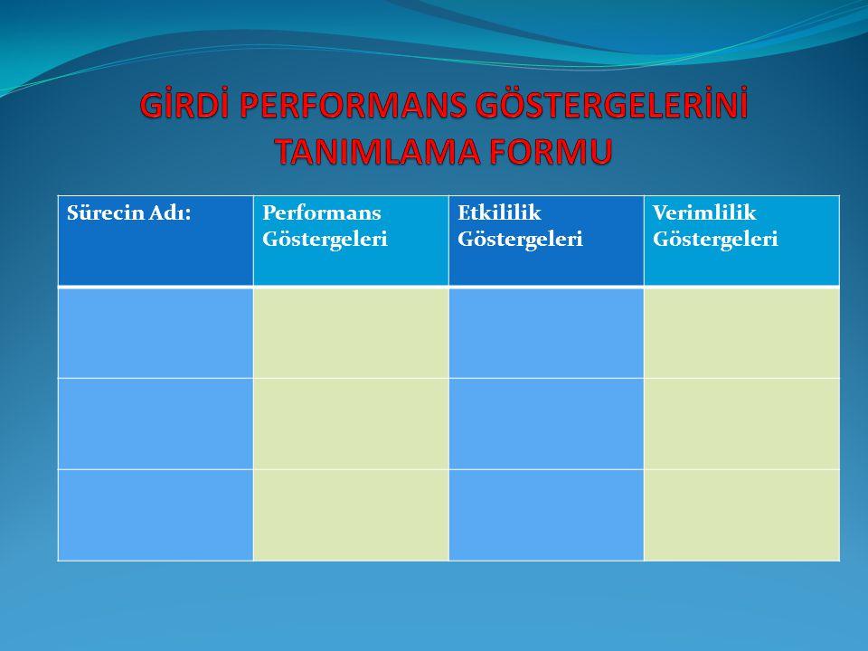 GİRDİ PERFORMANS GÖSTERGELERİNİ TANIMLAMA FORMU