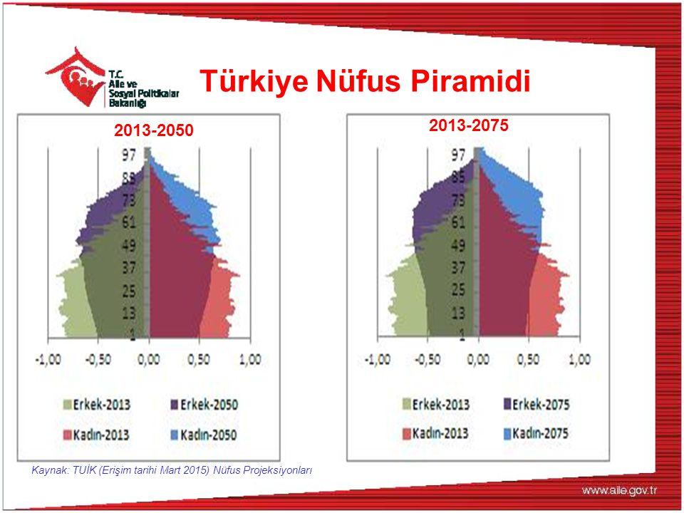 Türkiye Nüfus Piramidi