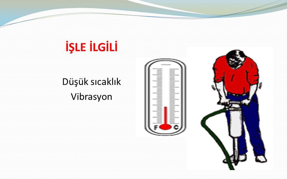 İŞLE İLGİLİ Düşük sıcaklık Vibrasyon