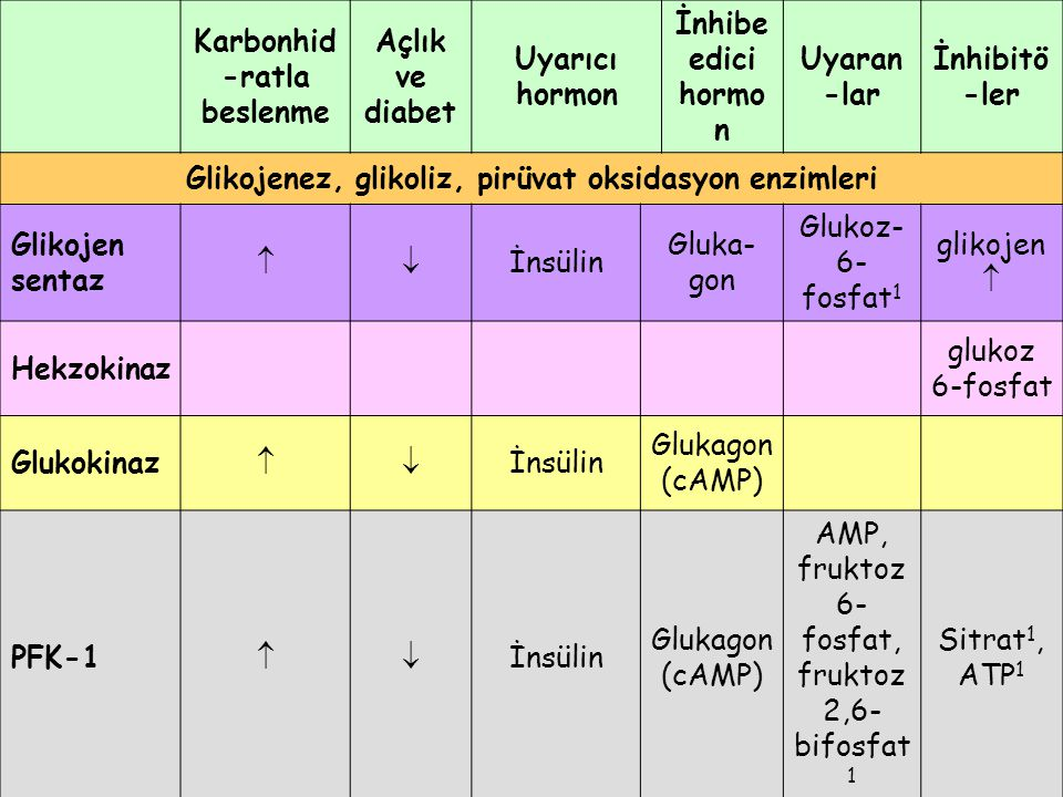 Karbonhid-ratla beslenme Açlık ve diabet Uyarıcı hormon
