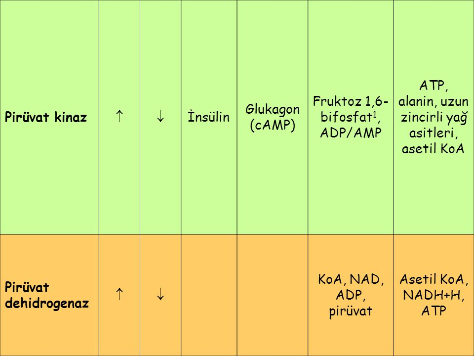 Fruktoz 1,6-bifosfat1, ADP/AMP