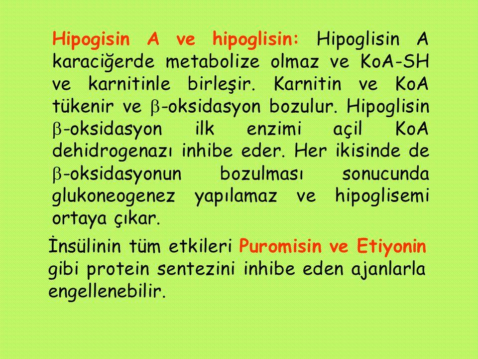 Hipogisin A ve hipoglisin: Hipoglisin A karaciğerde metabolize olmaz ve KoA-SH ve karnitinle birleşir. Karnitin ve KoA tükenir ve -oksidasyon bozulur. Hipoglisin -oksidasyon ilk enzimi açil KoA dehidrogenazı inhibe eder. Her ikisinde de -oksidasyonun bozulması sonucunda glukoneogenez yapılamaz ve hipoglisemi ortaya çıkar.