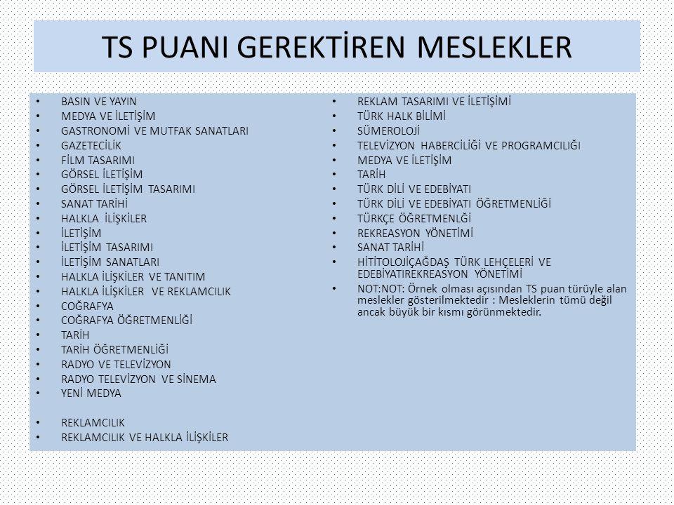 TS PUANI GEREKTİREN MESLEKLER